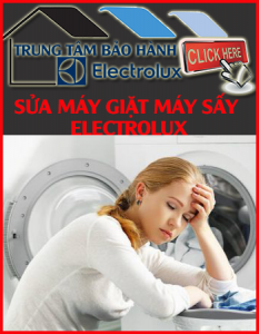 L-sua-may-giat-electrolux